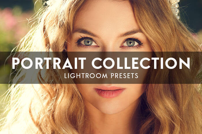 Portrait Collection